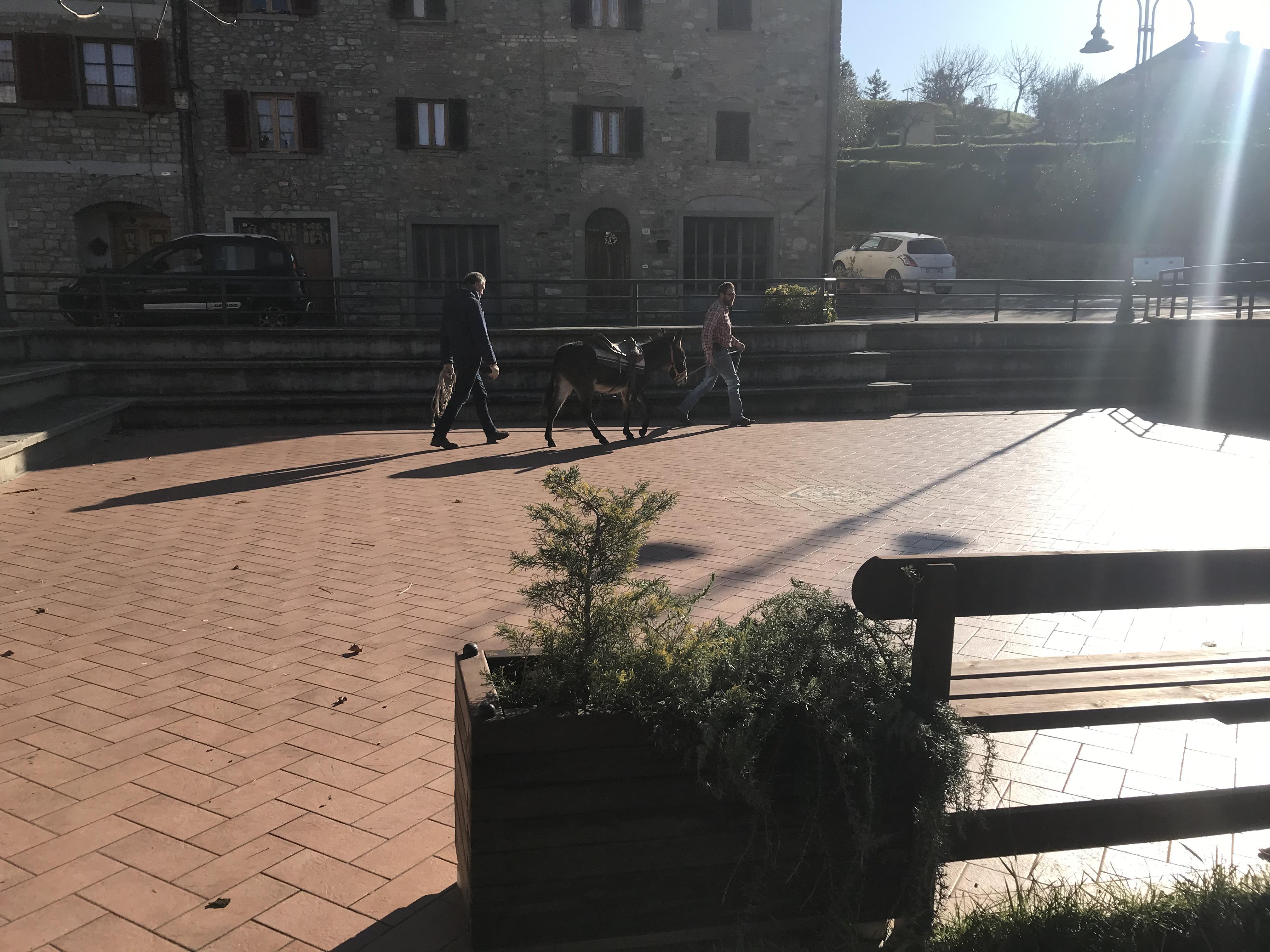 Arrivo d Pinocchio a Lierna