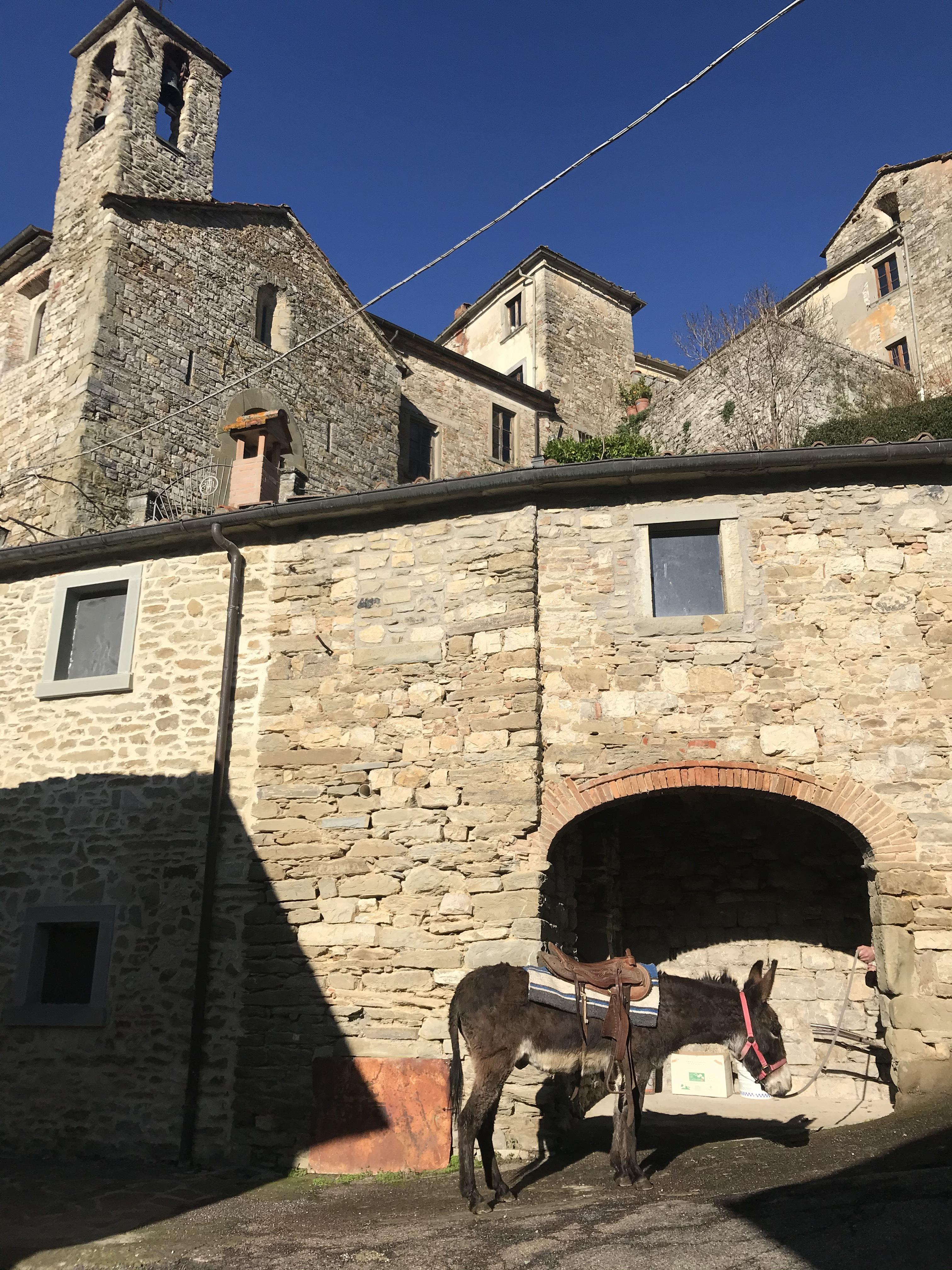 Pinocchio a spasso per il borgo di Lierna 3