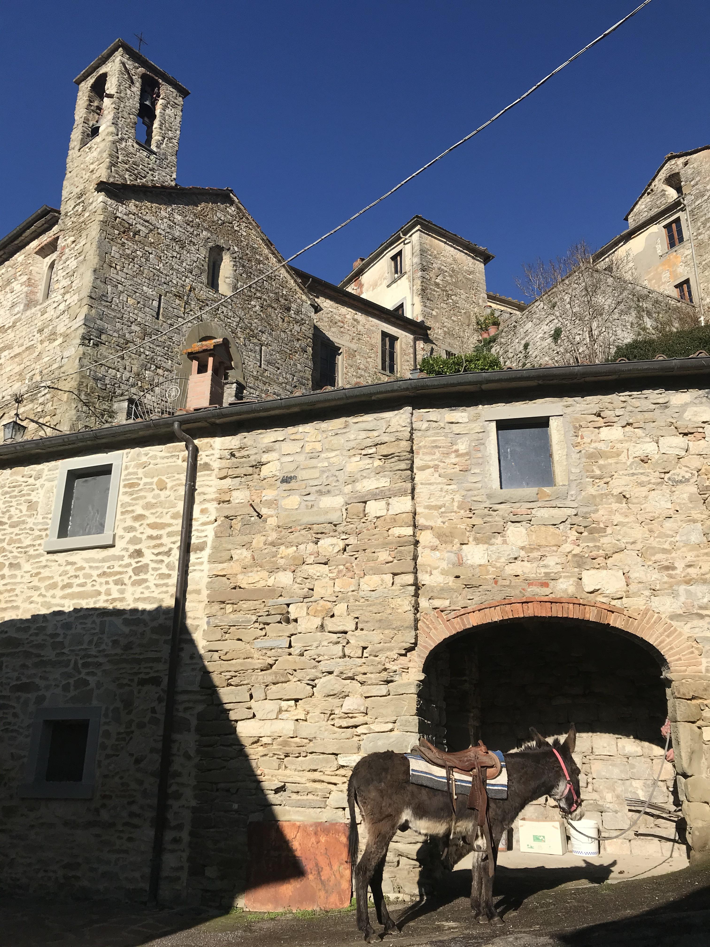 Pinocchio a spasso per il borgo di Lierna 4